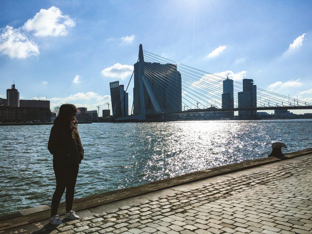 Muelle de Rotterdam